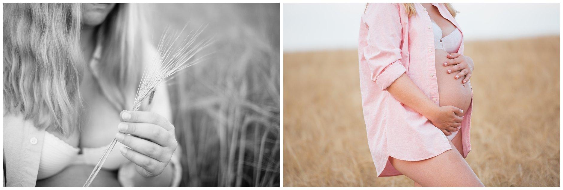 Gravidfotografering i kornåker høst