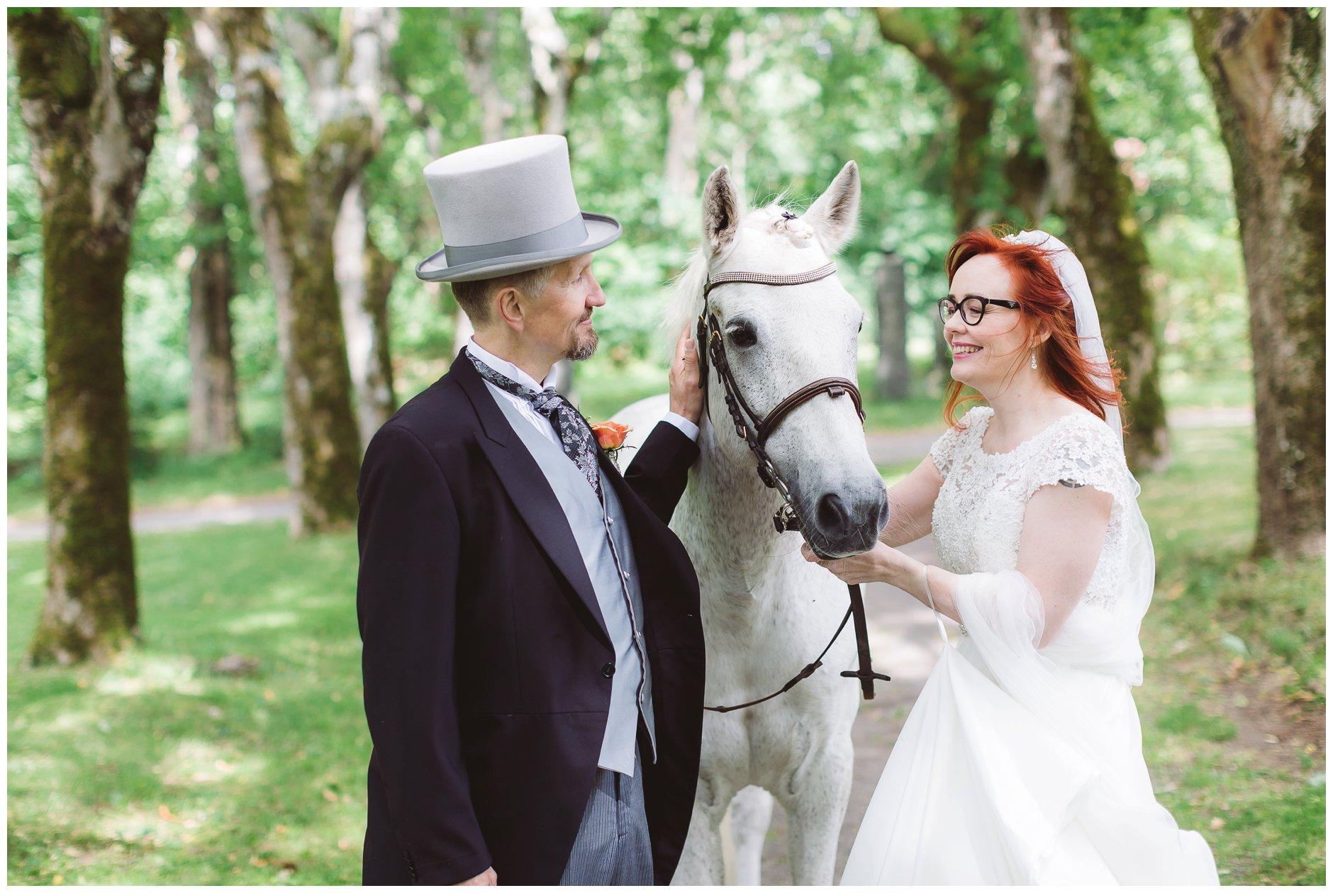 Bryllupsfotografering med hvit hest